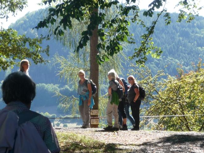 Auf dem Gotthard bei Amorbach - Foto von Georg Magirius