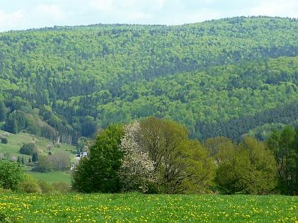 Aussicht vom Faustballfeld bei Frammersbach im Spessart - Foto von www.georgmagirius.de