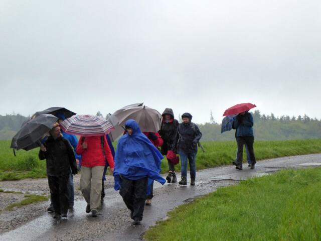 Ausweg aus dem Sonnenkult - Spirituelle Wanderer auf der Hochebene Bodenrod. Böen und Regen, die Schirme und Regenjacken flattern. Diese Wanderung ist der Ausweg aus dem Sonnenkult.