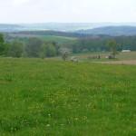 Blick von Eiche Momart Odenwald Foto von Heike Herwig