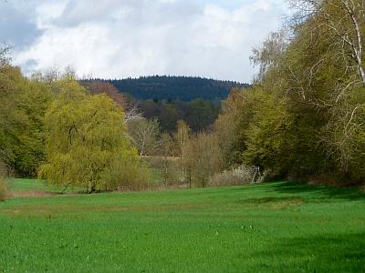 Braubachachtal Panorama Taunus