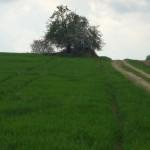 Das Ende der Erreichbarkeit - Foto von Heike Herwig