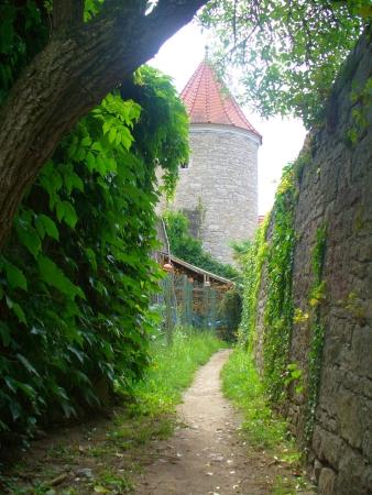 Flurturm in Sommerhausen