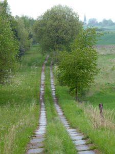 Kolonnenweg bei Breitensee - Grünes Band