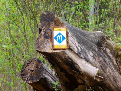 Markierung Blaues M - Grottenweg im Spessart - Dort finden sich verborgene Kräfte.