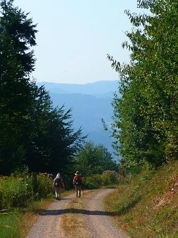 Ins Blaue gehen Richtung Gengenbach
