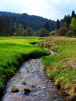 Lohrbach am Grottenweg im Spessart