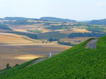 Mainwanderweg bei Retzbach - Foto (c) Frankenglück von Georg Magirius