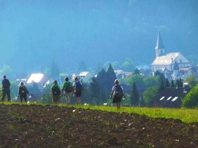 Nach Zell am Harmersbach auf dem Kinzigtäler Jakobusweg