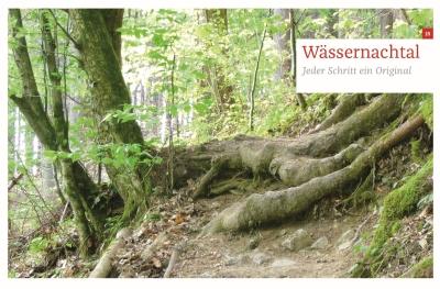 Dicke Baumwurzeln auf dem Waldpfad an der Wässernach bei Haßfurt. Das Motto dieses Tales kann lauten: Die wilden Windungen des Wässernachtal