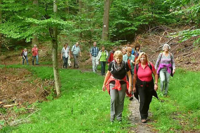 Spirituelle Wanderung zum Hahnenkamm in Unterfranken