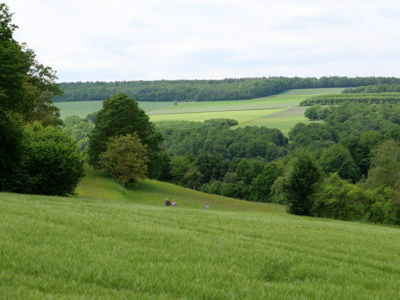 Eigene Fußspuren setzen - zum Beispiel auf dem Weg von Morlesau im Saaletal hinauf nach Ochsenthal