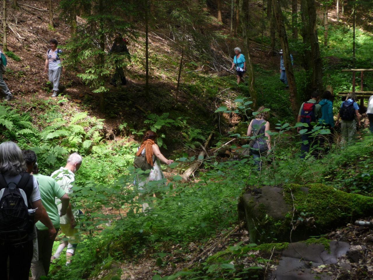 Die Klamm am Tretstein bei Gräfendorf - ganz nahe sind sie, die Wasser der Unendlichkeit