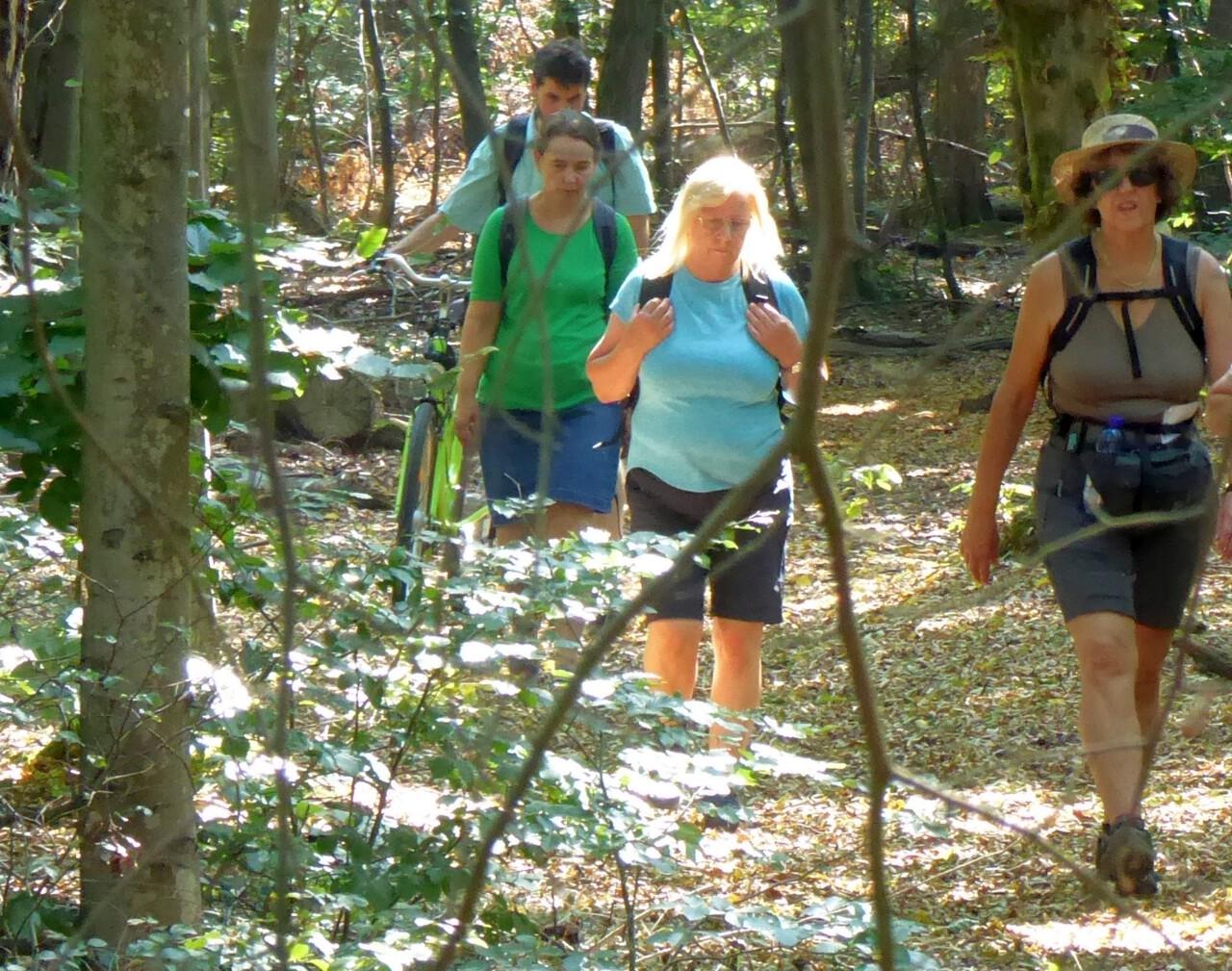 Meditieren mit offenen Augen - Stilletour der Reihe GangART im Frankfurter Stadtwald