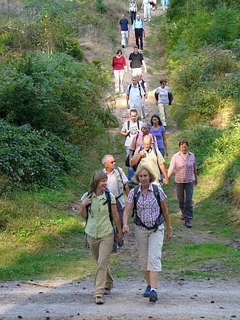 Spirtuelle Wanderung im Spessart bei Heigenbrücken